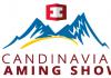 scandinavian gaming show