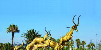 Tsogo Sun South Africa