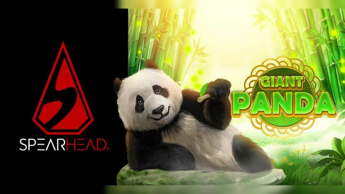 Giant Panda Spearhead Studios