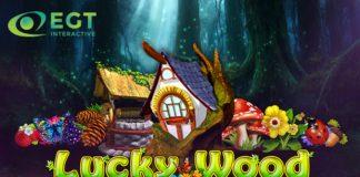 EGT Interactive Lucky Wood video slot