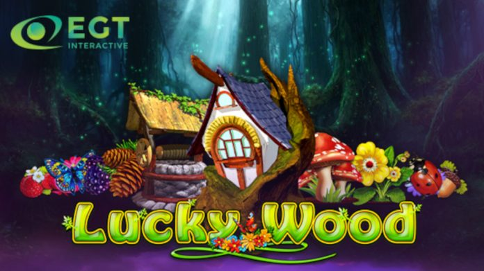 EGT Interactive Lucky Wood video slot