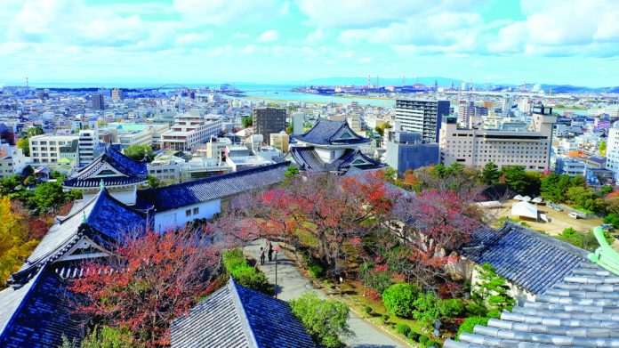 Japan Clairvest Neem Ventures Wakayama partner